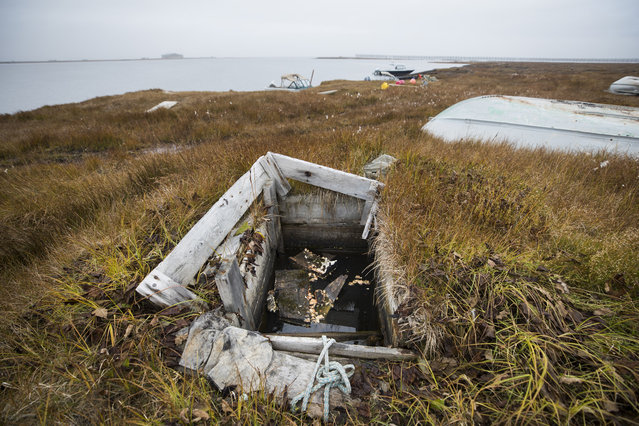 A permafrost ice cellar, which at one time served as a natural freezer for food, is now flooded by melted permafrost in the Inupiat village of Kaktovik, Alaska, USA, 11 September 2017. (Photo by Jim Lo Scalzo/EPA/EFE)