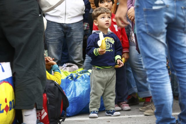 A young migrant child eats a banana after arriving at a railway station in Vienna, Austria September 5, 2015. (Photo by Dominic Ebenbichler/Reuters)