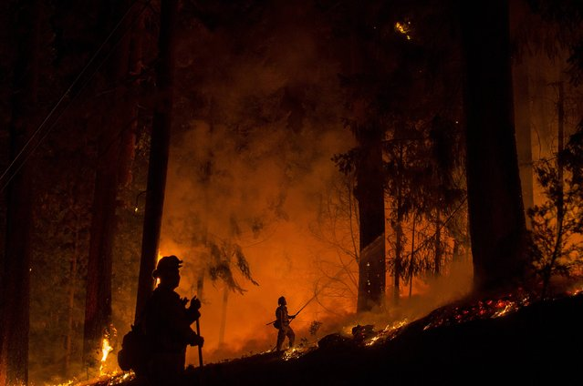 A firefighter battling the King Fire sprays water on a backfire in Fresh Pond, California September 17, 2014. (Photo by Noah Berger/Reuters)