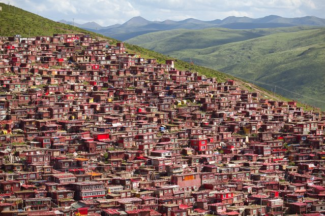 """""""The houses of believers"""". In Sertar Larung Gar Buddhist Institute, countless number of small red houses were awash on the lush green mountain sides, they are houses of thousands of Buddhist students who live in the institute. Photo location: China. (Photo and caption by Sai kit Leung/National Geographic Photo Contest)"""