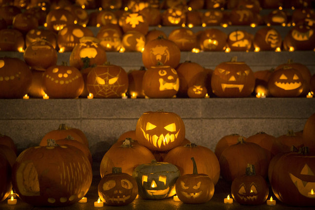 An installation of 3,000 candle-lit pumpkins blanket the canal side steps at Granary Square on October 31, 2014 in London, England. The pumpkins, created by members of youth development group Global Generation and other carvers, will be on display and illuminated from dusk until Saturday November 1, 2014. (Photo by Rob Stothard/Getty Images)