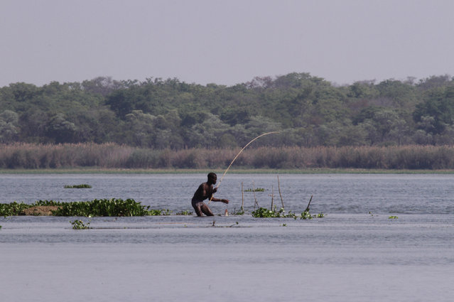 In this photo taken Friday October 31 2014,  a man fishes on the shores of  Lake Chivero, west of Harare. (Photo by Tsvangirayi Mukwazhi/AP Photo)