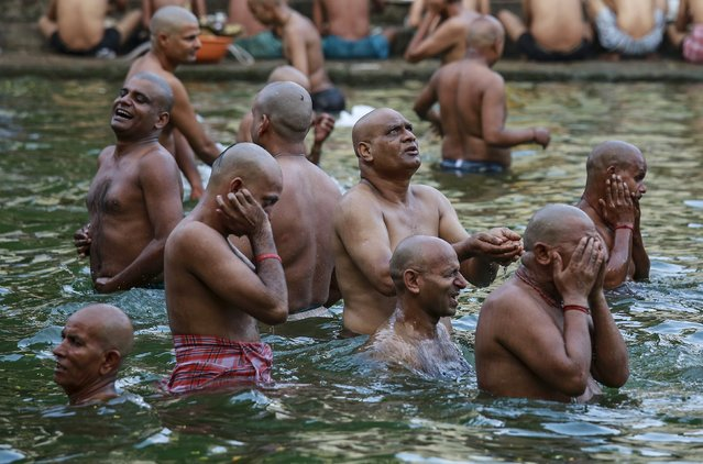 Hindu devotees pray in a holy pond on the auspicious day of Mahalaya in Mumbai, India, October 12, 2015. (Photo by Danish Siddiqui/Reuters)