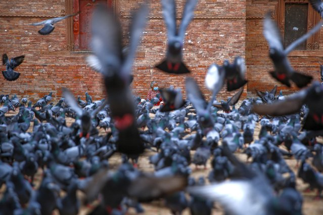 Flocks of pigeons take flight as a woman wearing a face mask sits during the government imposed lockdown amid the rise in coronavirus disease at Kathmandu Durbar Square in Kathmandu, Nepal on Sunday, August 30, 2020. (Photo by Skanda Gautam/ZUMA Wire/Rex Features/Shutterstock)