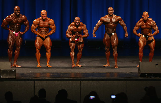 Toney Freeman of the USA, Ben Pakulski of Canada, Dexter Jackson of the USA, Edward Nunn of the USA and Ivan Sadek of Australia pose during the IFBB Australia Pro Grand Prix at The Plenary on March 9, 2013 in Melbourne, Australia.  (Photo by Robert Cianflone)