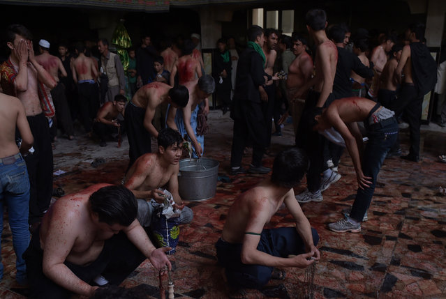 Afghan Shiite Muslims use chains and blades during ritual self-flagellation as part of Ashura commemorations at a mosque in Kabul on October 9, 2016. Ashura mourns the death of Imam Hussein, a grandson of the Prophet Mohammed, who was killed by armies of the Yazid near Karbala in 680 AD. (Photo by Shah Marai/AFP Photo)