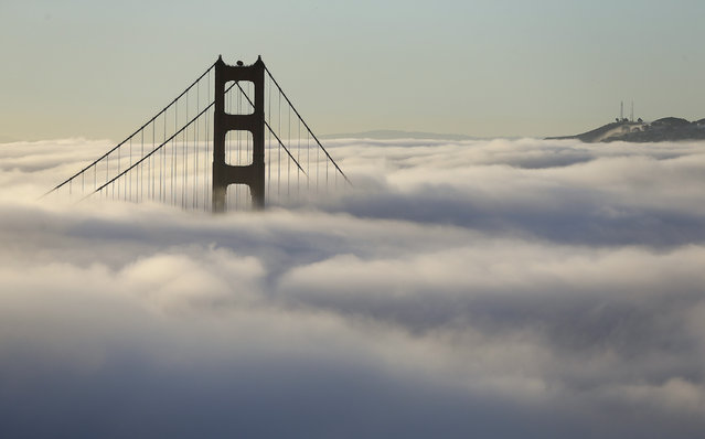 Fog blankets the south tower of the Golden Gate Bridge Friday, October 21, 2016, in San Francisco. (Photo by Eric Risberg/AP Photo)