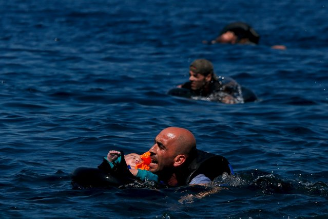 A Syrian refugee holding a baby swims towards the Greek island of Lesbos, September 12, 2015.  Alkis Konstantinidis: Another inflatable boat packed with dozens of migrants and refugees heading towards the shore. (Photo by Alkis Konstantinidis/Reuters)