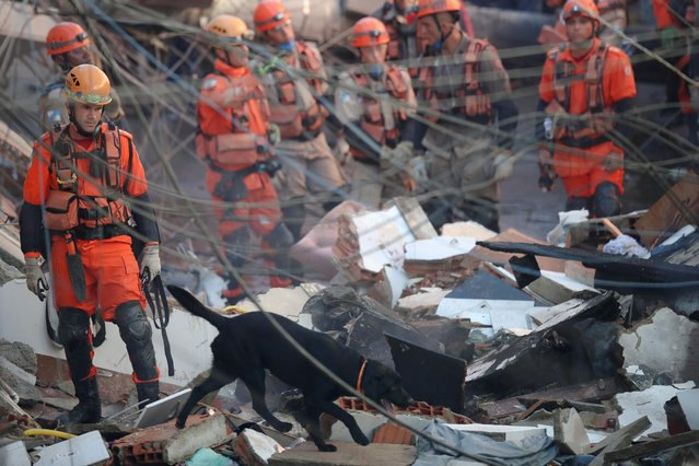 Firefighters and a rescue dog search for victims between the debris of a collapsed building in Rio das Pedras slum, Rio de Janeiro, Brazil, June 3, 2021. (Photo by Ricardo Moraes/Reuters)