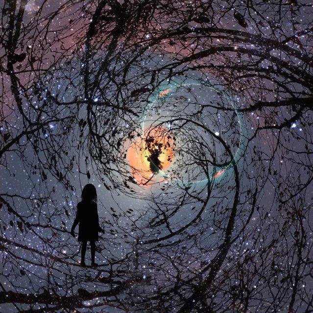 A starry night sky. (Photo by Ali Jardine/Caters News)