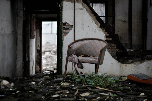 """""""Chair Single"""". (Photo by Graham Fink/Riflemaker)"""