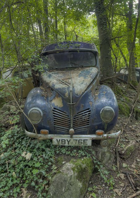 A Ford has been taken over by nature. (Photo by Kenneth Provost/Mediadrumworld.com)