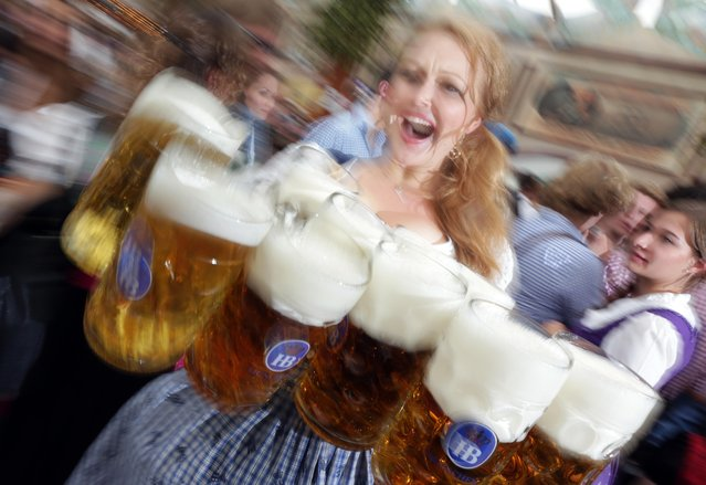 """A waitress carries beer mugs during the opening ceremony in the """"Hofbraeuzelt"""" beer tent of the 180th Bavarian """"Oktoberfest"""" beer festival in Munich, southern Germany, Saturday, Sept. 21, 2013. (Photo by Matthias Schrader/AP Photo)"""