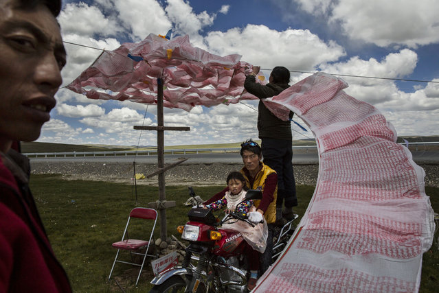 Kevin Frayer, Canada. Shortlist, Professional , People. Tibetan nomads put up a string of Buddhist prayer flags near a government resettlement community on July 24, 2015 on the Tibetan Plateau in Madou County, Qinghai, China. Tibetan nomads face many challenges to their traditional way of life including political pressures, forced resettlement by China's government, climate change and rapid modernization. (Photo by Kevin Frayer/Getty Images/Sony World Photography Awards)
