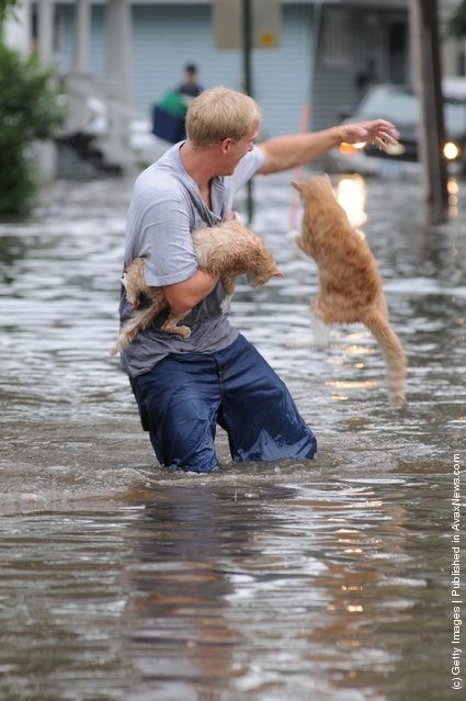 Man rescues cats during a flood