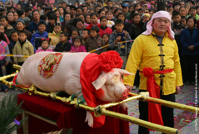 A man stands beside a slaughtered pig at the annual Nianzhu Festival
