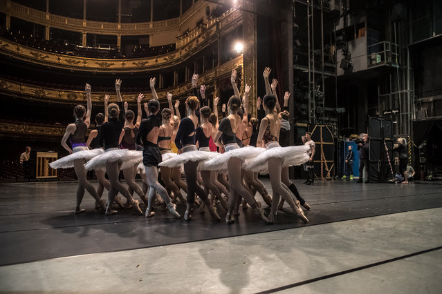 """Dancers of the Czech National Ballet perform during a rehearsal of """"Swan Lake"""" at the National Theatre in Prague, Czech Republic, 04 March 2019. Swan Lake ballet is one of the famous of all classical ballets, the most frequently performed and the most popular worldwide. The new Czech National Ballet production is a revival of the story's version created by the world-renowned choreographer John Cranko, the founder of the Stuttgarter Ballett. The Czech National Ballet is the first big company to have been granted the approval to stage the piece outside Germany. Up to the present day, the Czech National Theatre has staged 12 adaptations of Swan Lake. (Photo by Martin Divíšek/EPA/EFE)"""