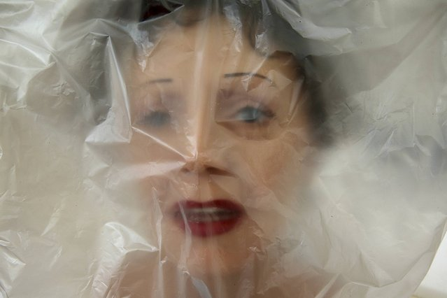 The head of Edith Piaf's wax statue is wrapped in plastic at the Paris Grevin Wax Museum's  workshop before it is shipped to Prague for the opening of their new museum, April 11, 2014. Statues are prepared ahead of the opening of the new Grevin Wax Museum in Prague on May 1st. Fifteen artists, including sculptors, moulders, dressmakers, make-up artists, wig makers, hairdressers along with lighting and set designers and sound engineers are involved in the creation of the hyper realistic statues. (Photo by Philippe Wojazer/Reuters)