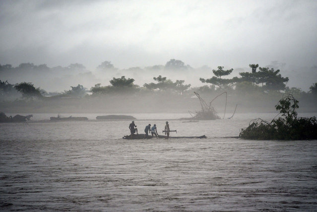 In this picture taken on July 15, 2019, Indian men catch a tree in the flooded Manas river, following heavy rainfall in Baksa district of Assam, in the North-Eastern states of India. Torrential monsoon rains swept away homes and triggered landslides across South Asia, affecting millions of people and spiking the death toll to at least 180, officials said on July 16. (Photo by David Talukdar/AFP Photo)