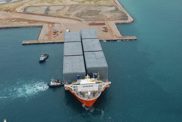Blue Marlin: The Giant Ship