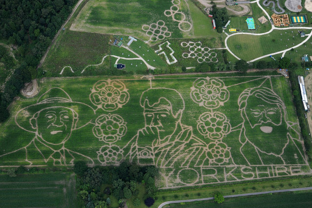 An aerial view of  farmer Tom Pearcy's Maze in York, England, on Jule 11, 2014. The York maze features the giant likenesses of famous Yorkshiremen Geoffrey Boycott, Jeremy Clarkson and Brian Blessed cut from an 18 acre field of maize. (Photo by Anna Gowthorpe/Getty Images)