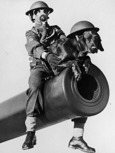 A soldier holds the canine mascot steady as they pose on the muzzle of one of Canada's powerful East Coast defense guns, March 22, 1941. (Photo by Fox Photos/Getty Images)