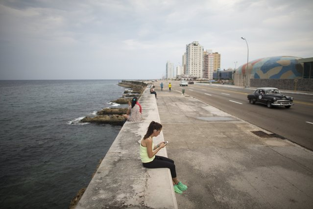 U.S. medical student Yasemin Lawson, 35, from Washington, uses the internet at a Wi-Fi hotspot in Havana, September 22, 2015. (Photo by Alexandre Meneghini/Reuters)
