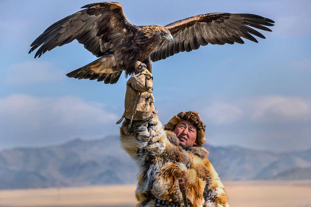 Batzaya Choijiljav, 41, from Mongolia snapped these magnificent pictures of the in-flight eagles at the annual traditional Kazakhs' festival in October 2015. (Photo by Batzaya Choijiljav/Caters News)