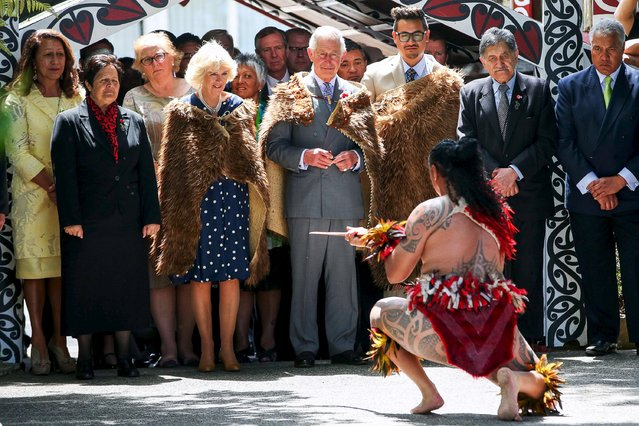 Britain's Prince Charles and Camilla, Duchess of Cornwall, wearing traditional feather cloaks, are welcomed and challenged by a Maori warrior at Turangawaewae Marae in Ngaruawahia, south of Auckland, New Zealand November 8, 2015. (Photo by Hagen Hopkins/Reuters)