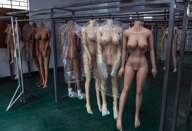 "Bodies of the ""smart"" s*x dolls hang to dry in dolls factory in Dongguan, Guandong Province, China, 24 April 2018. (Photo by Aleksandar Plavevski/EPA/EFE)"