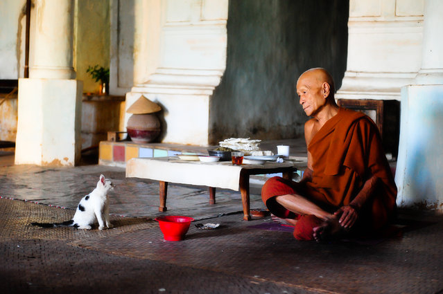 """Companions"". While travelling through remote parts of Inle Lake, I came across this monk who chose to live in complete isolation. The young cat was his only companion. Location: Indein, Inle Lake, Burma (Myanmar). (Photo and caption by Leon Shkolnik/National Geographic Traveler Photo Contest)"