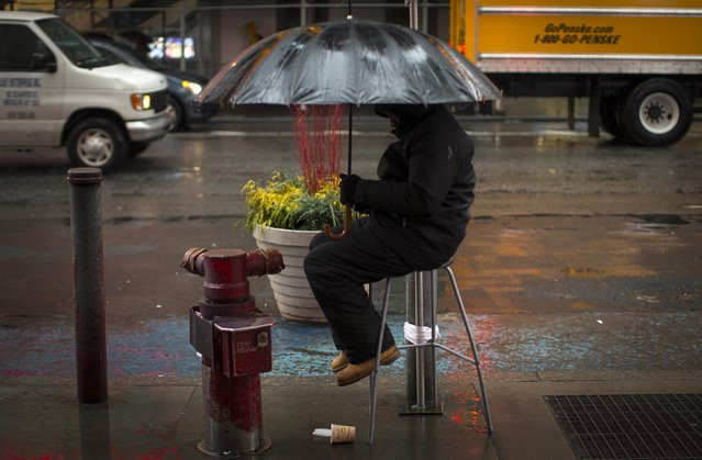A man sits on a stool under an umbrella in a cold rain in Times Square in New York City, January 12, 2015. (Photo by Mike Segar/Reuters)