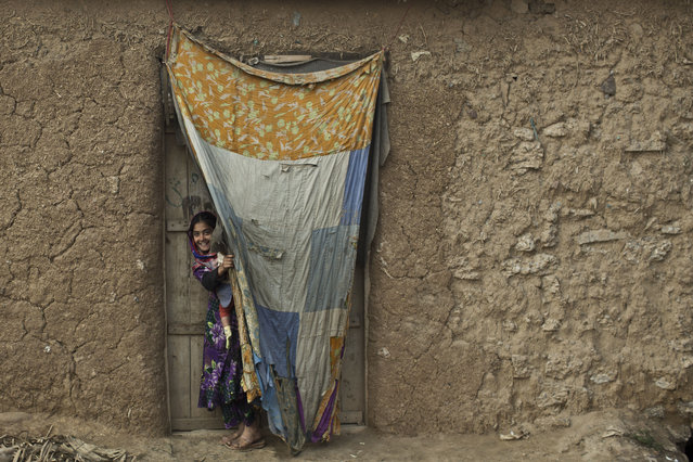 An Afghan refugee girl peeks on through a curtain at the doorway of her family's mud home in a slum on the outskirts of Islamabad, Pakistan, Monday, January 26, 2015. (Photo by Muhammed Muheisen/AP Photo)
