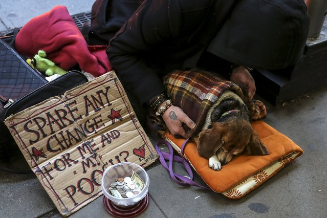 A man sits on 42nd Street with his dog in the Manhattan borough of New York, January 5, 2016. (Photo by Carlo Allegri/Reuters)