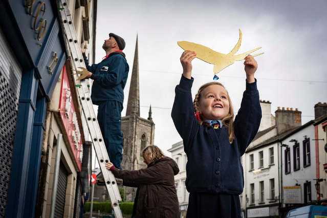 Thea Johnston of Enniskillen integrated primary school helps the artists Simon Carman and Helen Sharp as they begin the installation of 150 swallows in gold leaf in the Northern Irish town, to mark the launch of a new literary tourism initiative on May 11, 2021. (Photo by Brian Morrison/PA Wire Press Association)