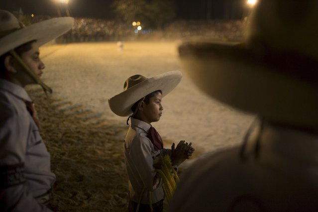 Emiliano Flores, 10, from Mexico, watches the International Livestock Fair in Havana March 21, 2015. (Photo by Alexandre Meneghini/Reuters)