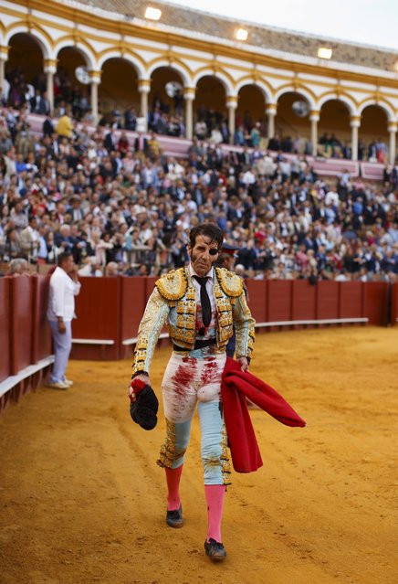 Spanish matador Juan Jose Padilla walks after killing a bull during a bullfight at The Maestranza bullring in the Andalusian capital of Seville, southern Spain April 25, 2015. (Photo by Marcelo del Pozo/Reuters)