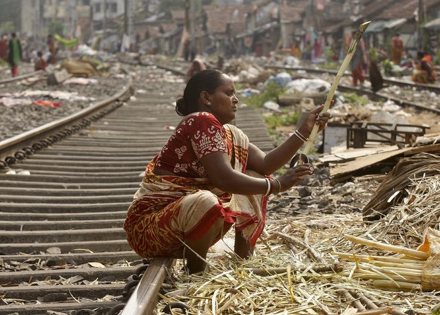 A woman peels sugarcanes on a railway track to sell it to sugarcane juice vendors at a slum area in Kolkata, India May 10, 2015. (Photo by Rupak De Chowdhuri/Reuters)