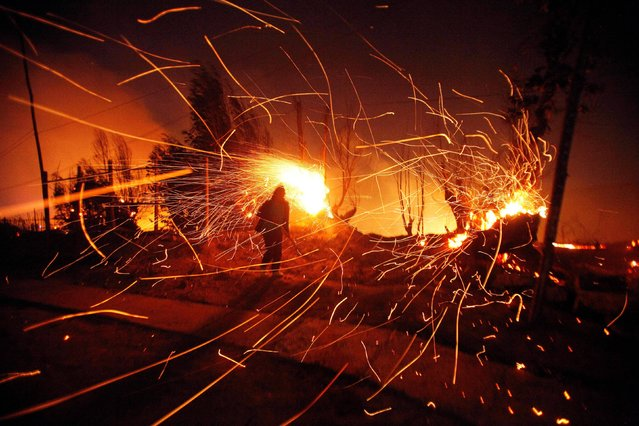 A person tries to extinguish flames as sparks fly during a wild forest fire in Valparaiso, Chile, Sunday April 13, 2014. Authorities say the fires have destroyed hundreds of homes, forced the evacuation of thousands and claimed the lives of at least seven people. (Photo by Luis Hidalgo/AP Photo)
