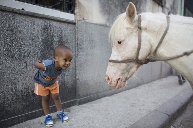 Alexo Carmona, 2, looks at Coco, a two-year-old pony, in downtown Havana, in this March 6, 2015 file photo. Nearly a quarter of a million people follow the Reuters Instagram account – and it's still growing fast. To mark the mid-point of 2015, Reuters has compiled the twenty most-liked pictures so far. This picture was 20th most popular. (Photo by Alexandre Meneghini/Reuters)