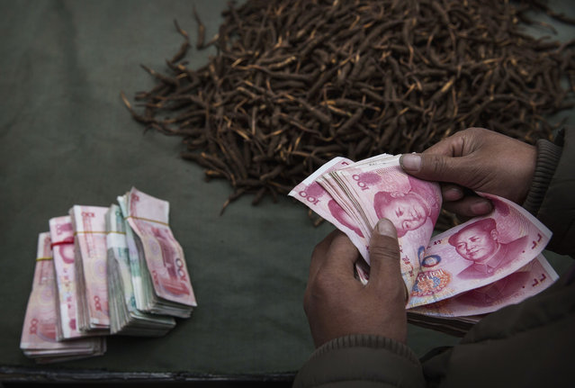 A Tibetan nomad counts money after selling his cordycep fungus at a market on May 22, 2016 on the Tibetan Plateau in Yushu town in the Yushu Tibetan Autonomous Prefecture of Qinghai province. (Photo by Kevin Frayer/Getty Images)