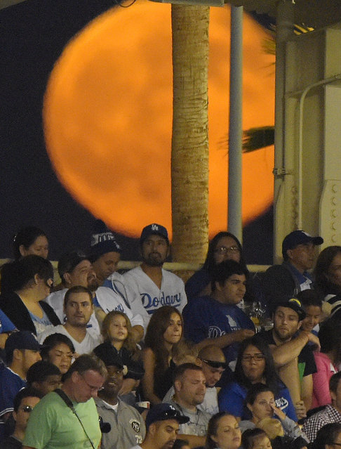 A supermoon rises behind fans during a baseball game between the Los Angeles Dodgers and the San Diego Padres at Dodger Stadium, Saturday, July 12, 2014, in Los Angeles. (Photo by Mark J. Terrill/AP Photo)