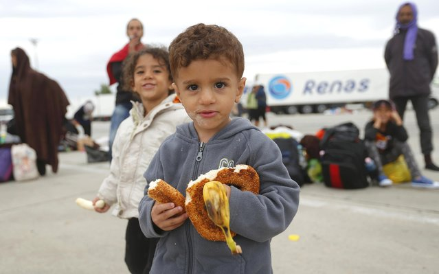 A young child eats a banana as migrants wait for buses after crossing Austrian border in Nickelsdorf September 5, 2015. (Photo by Laszlo Balogh/Reuters)