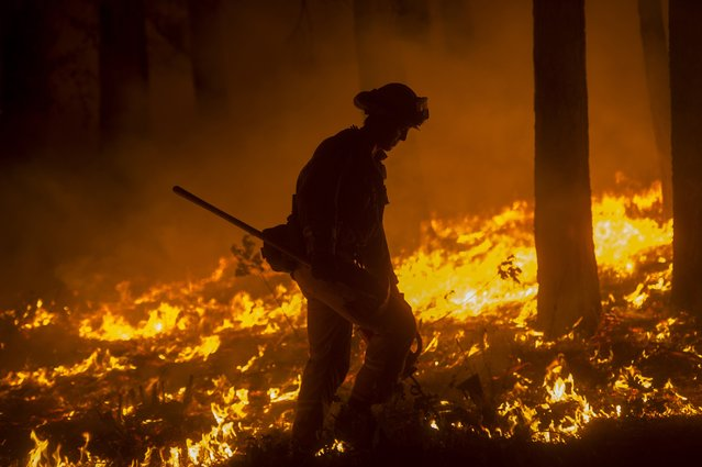 A firefighter crosses a backfire while battling the King Fire in Fresh Pond, California September 17, 2014. (Photo by Noah Berger/Reuters)