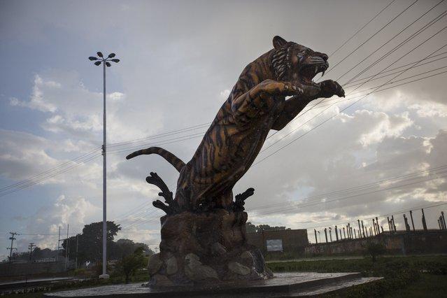 A statue of a tiger stands under heavy rain in El Tigre, Venezuela, Tuesday, October 31, 2017. (Photo by Rodrigo Abd/AP Photo)