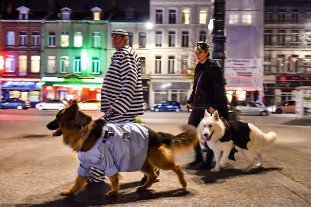 """People dressed up for Halloween walk with their dogs as they participate in the first """"Halloween doggy walk"""" in Lille, northern France, on October 31, 2014. Thirty participants and their dogs took part in the walk through the heart of Lille. (Photo by Philippe Huguen/AFP Photo)"""