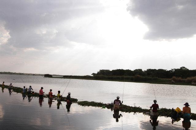 In this photo taken Monday, November 3, 2014,  women fish on the shores of Lake Chivero, west of Harare. (Photo by Tsvangirayi Mukwazhi/AP Photo)