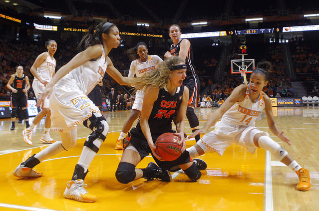 Oregon State guard Sydney Wiese (24) battles for the ball with Tennessee guard Andraya Carter (14) and center Isabelle Harrison (20) in the first half of an NCAA college basketball game Sunday, December 28, 2014, in Knoxville, Tenn. (Photo by Wade Payne/AP Photo)