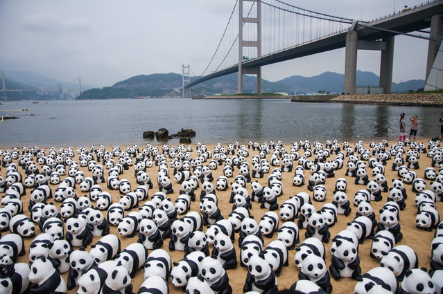 Volunteers pass pandas made by French artist Paulo Grangeon jointly with WWF with recycled papers at the beach under Tsing Ma Bridge for the first time on June 10, 2014 in Hong Kong, China. (Photo by ChinaFotoPress/Getty Images)
