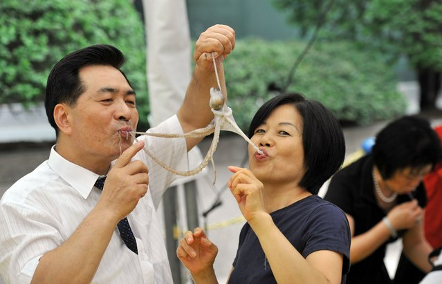 A South Korean man and a woman eat a live octopus during an event to promote a local food festival in Seoul on September 12, 2013. (Photo by Jung Yeon-Je/AFP Photo)